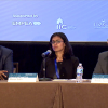 Seminar: Lifecycle of India Focused Funds – New York, (June 8, 2017) PANEL II – HEDGE FUNDS STRUCTURING